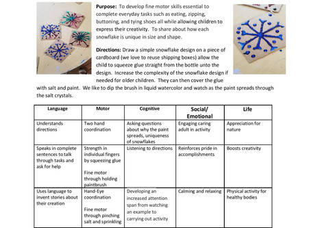 Activity Guide: Salty Snowflakes