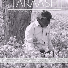 Taraash FILM.jpg