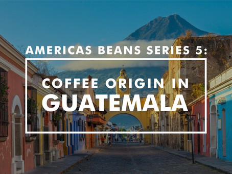 Americas Beans Series 5 – Coffee Origin in Guatemala