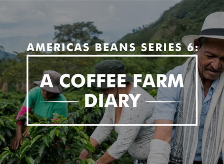 Americas Beans Series 6 – A Coffee Farm Diary