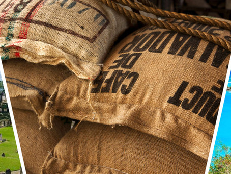 中美洲與加勒比海區咖啡的魅力