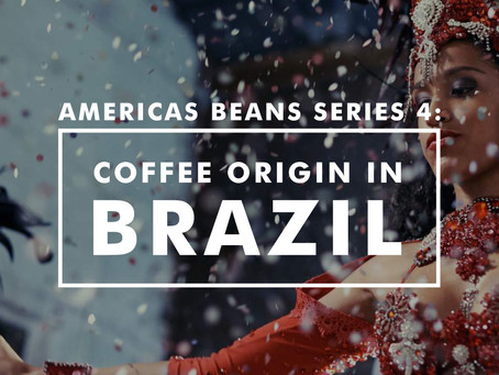 Americas Bean Series 4 - Coffee Origin in Brazil