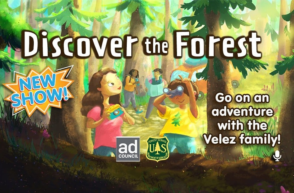 Discover the Forest