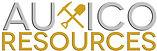 Auxico-Logo-300dpi.jpg
