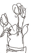 tulips9-2+.jpg