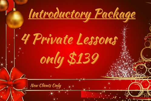 Introductory Package for Beginners. 4 Private Lessons!
