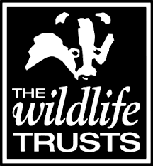 The Montgomeryshire Wildlife Trust In Action