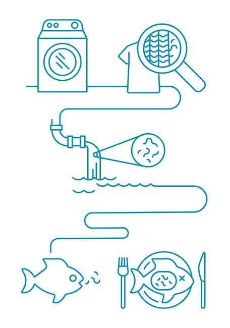 cora_ball_full_color_infographics-01.jpg