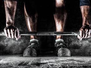 5 Best Olympic Barbells