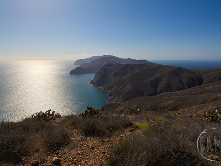 Catalina Part 2: Hiking the Trans Catalina Trail