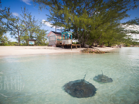 A Budget Traveler in the Bahamas