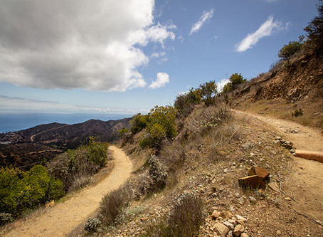 Catalina Part 1: Why I Love Catalina, and How I Hiked the Trans Catalina Trail
