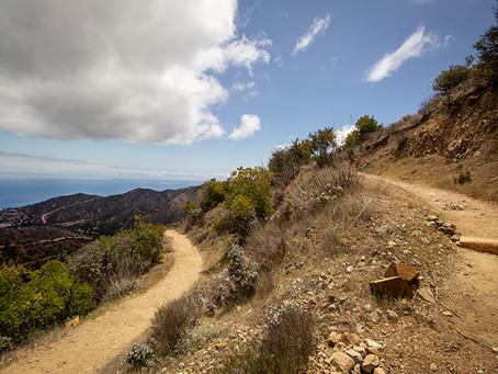 Catalina Part 1: Why I Love Catalina, and How I Hiked the Trans Catalina Trail