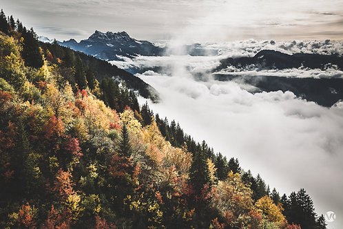 L'automne suisse