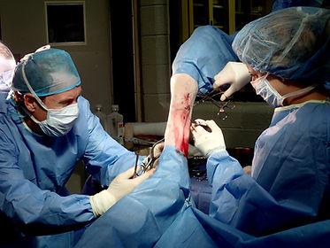 Electiv Equine Surgery- Southwest Equine