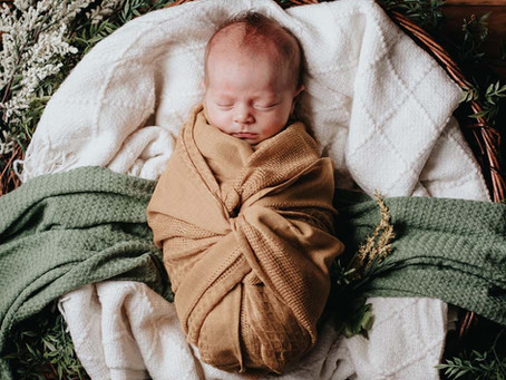 Fine Art Newborn Photography; A collaboration between Fausel Imagery and Armitage Photography