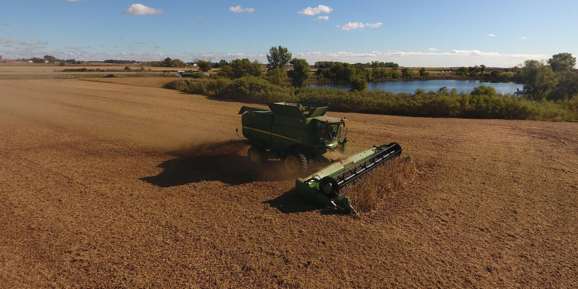 Soybean Harvest on the Marquardt Farm, 2018