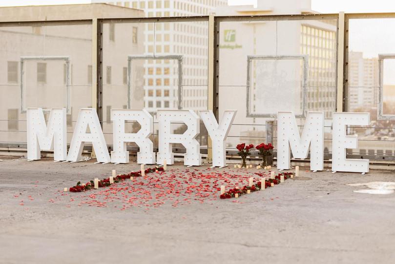 Poppy + Prim Proposals