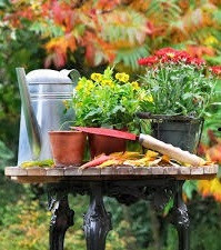 Prevent back pain during Autumn gardening