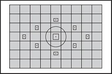 Exposure metering grid