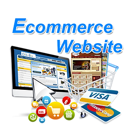 e-commerce-website-500x500.png