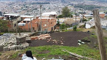 land cleaned.jpg
