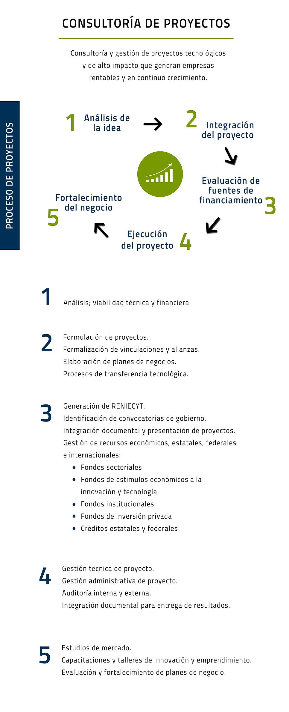 consultoria de proyectos desarrollado.pn