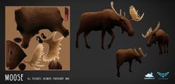 moose_01_web