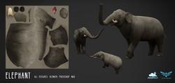 elephant_01_web