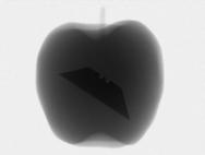 apple_razor.png