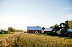 Red Barn Wedding, Seneca Lake
