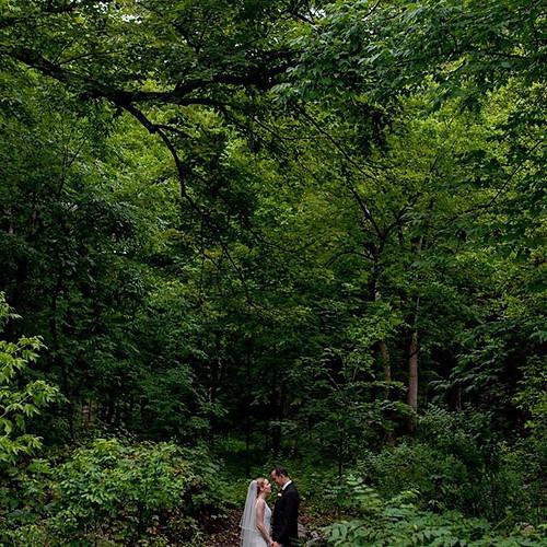 Stunning Seneca Lake Wedding