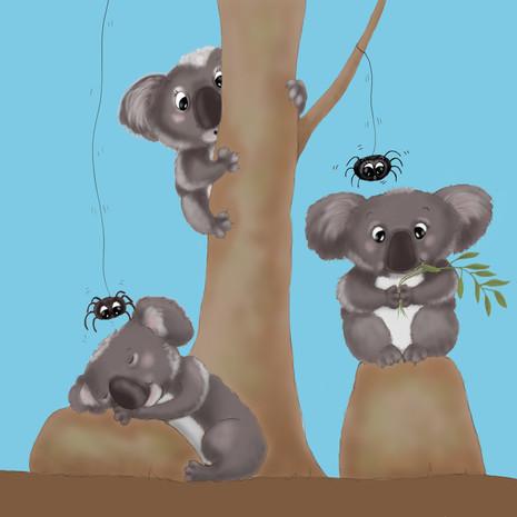 Koalas For Charity