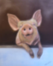 This little piggy.jpg