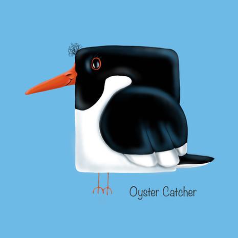 Oyster Catcher.jpg