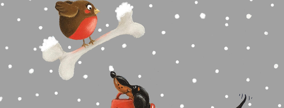 Duncan & The Robin - Pack of Ten Christmas Cards