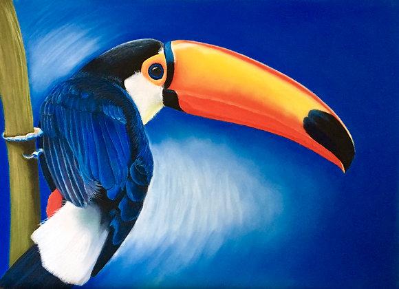 Toco - Original Painting