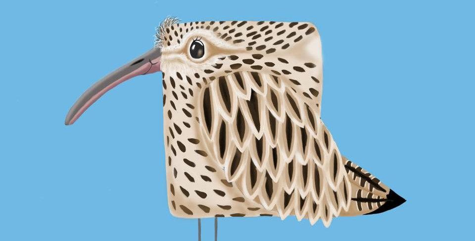'Curlew' - Coastal Bird Print
