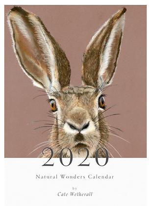 Natural Wonders Calendar - 2020 - A3 Size