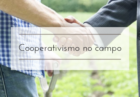 Cooperativismo no Campo