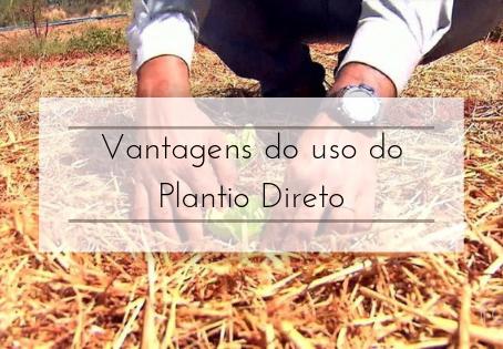 Vantagens do uso do Plantio Direto