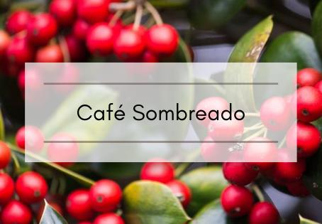 Café Sombreado