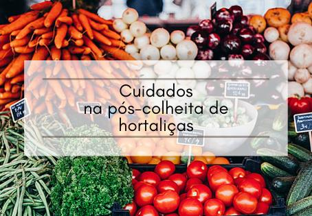 Cuidados na pós-colheita de hortaliças