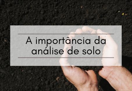 A importância da análise de solo