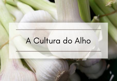 A Cultura do Alho