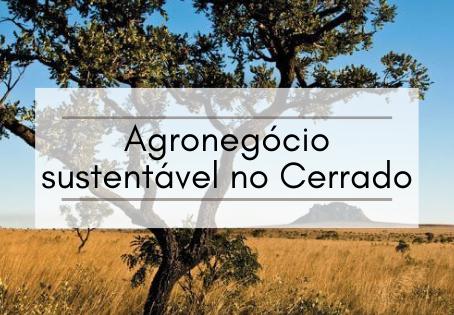 Agronegócio Sustentável no Cerrado