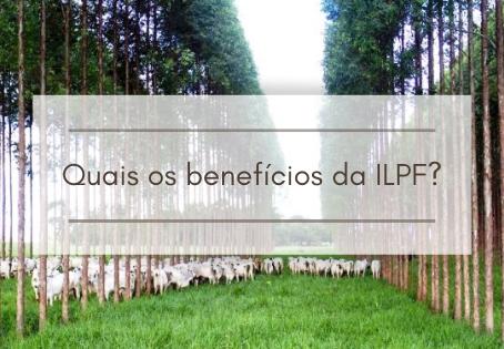 Os Benefícios da ILPF