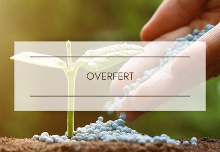 OVERFERT : Riscos da fertilização em excesso nas lavouras