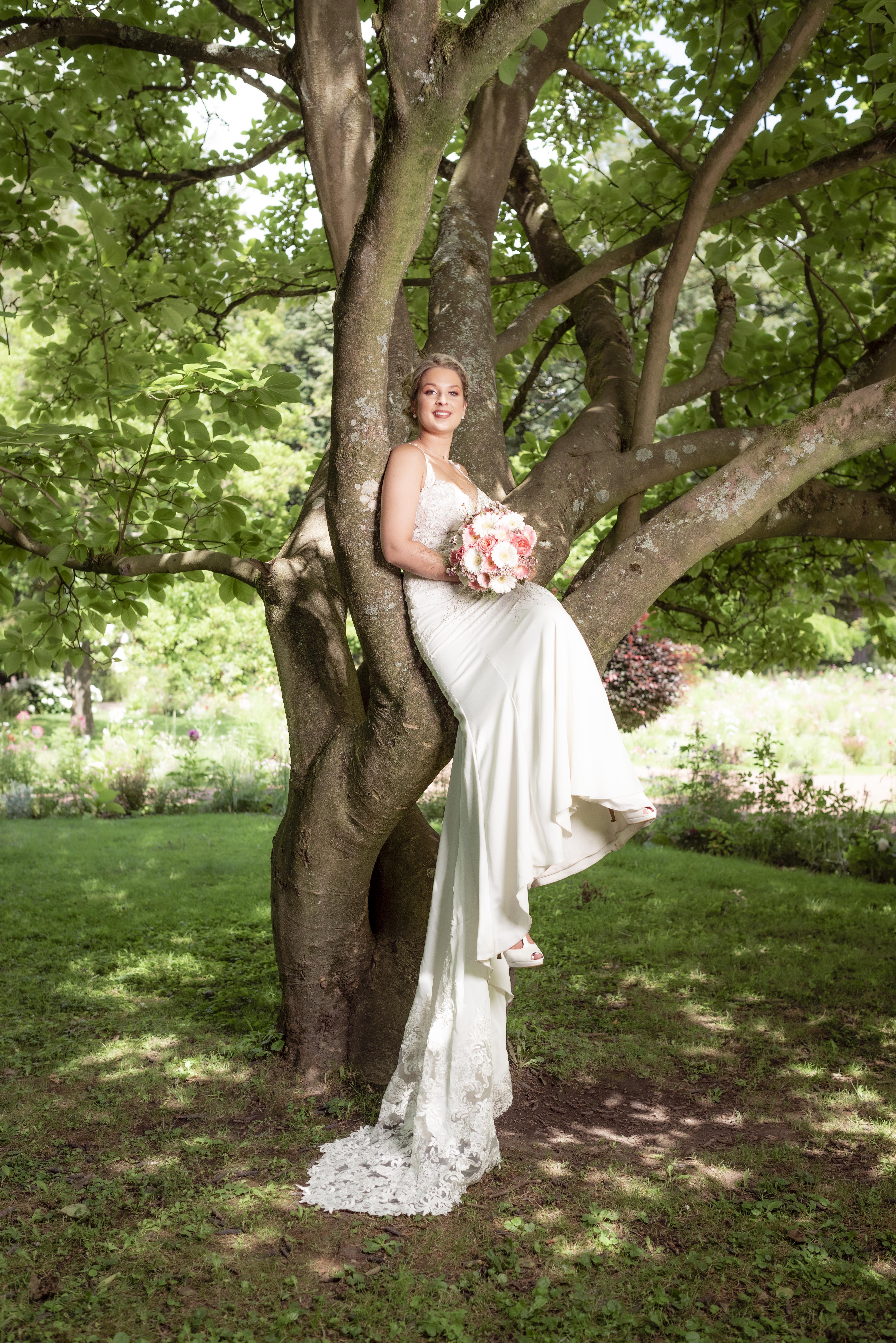 L'arbre d'Elodie