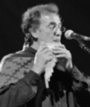 LOS CALCHAKIS - Sergio Arriagada